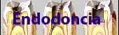 Endodoncia (Tratamiento de conducto)