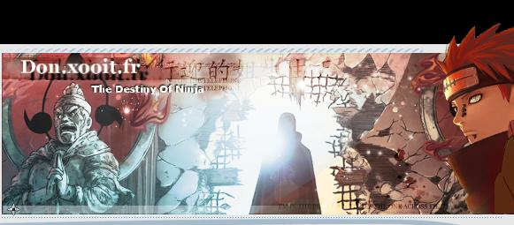 The Destiny Of Ninja Index du Forum