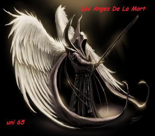Les Anges de La Mort Index du Forum